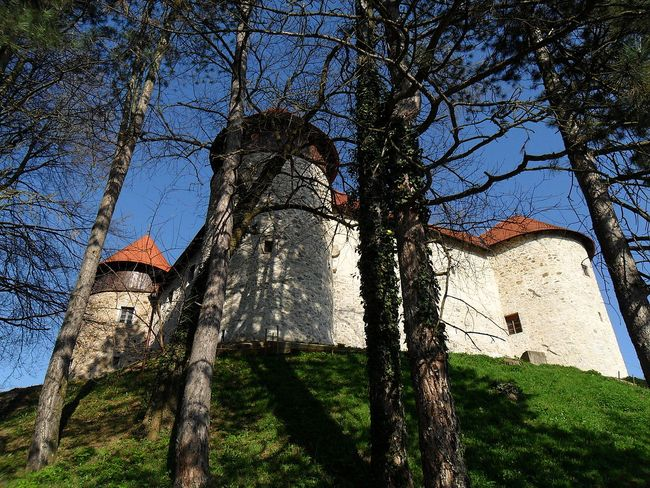 Kalovac kasteel