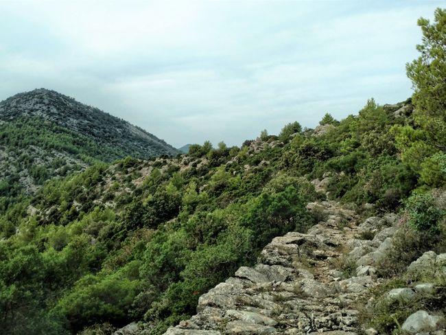 Mljet wandelroute Kroatie