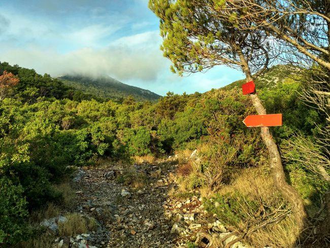wandelen op Mljet Kroatie